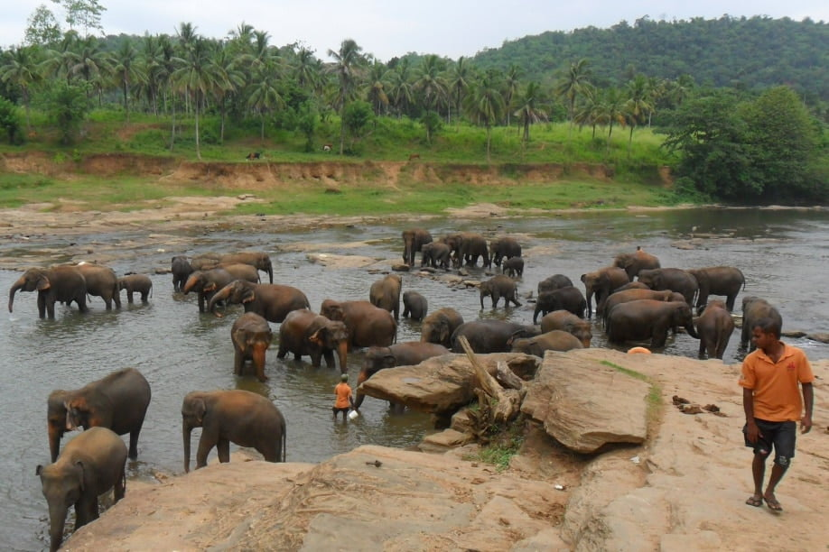 School Sports Tours to Sri Lanka