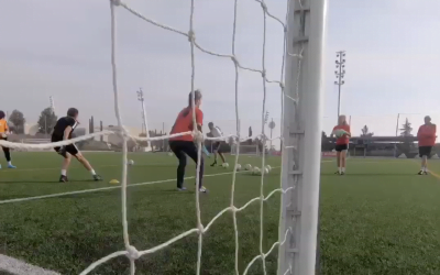 Icon Goalkeepers Academy Score In Spain